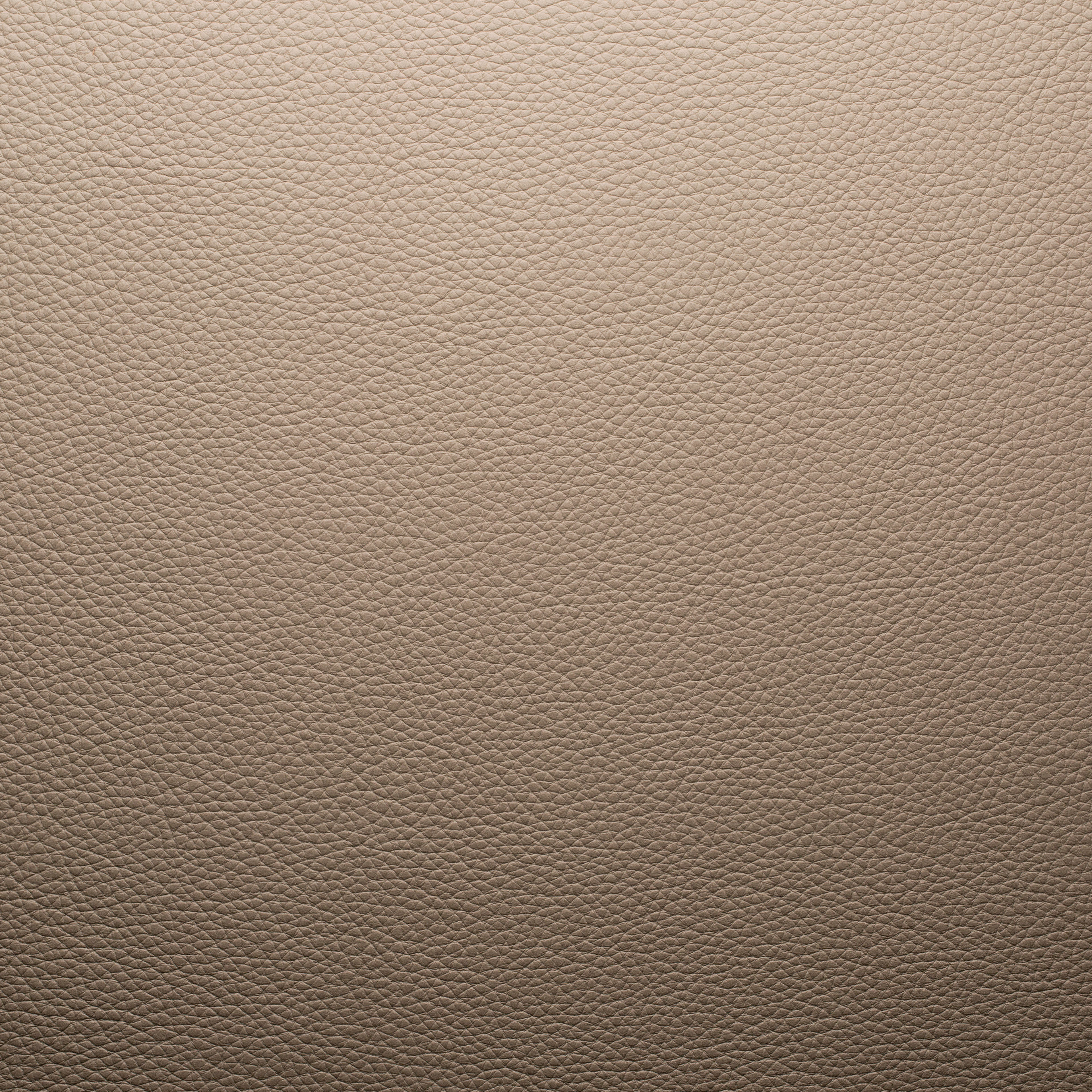 Taupe leather related keywords suggestions taupe for Colour taupe pictures